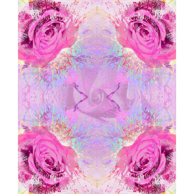 FOR ROSES ROSE / METAMORPHOSIS / variant /giclee print on canvas / Artist - Andreas Streicher