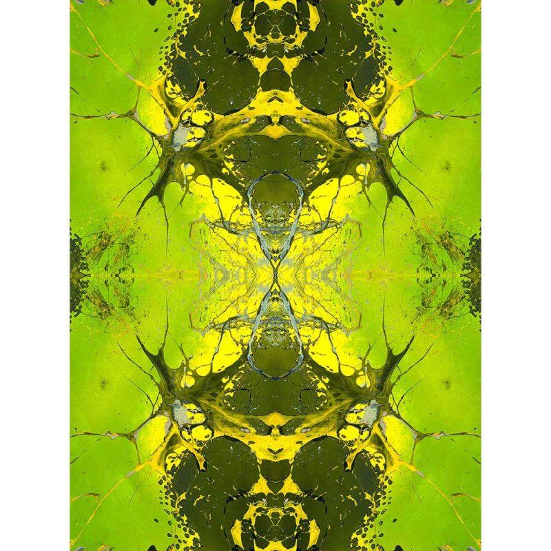 PANGAEA / METAMORPHOSIS / variant /giclee print on canvas / Artist - Andreas Streicher