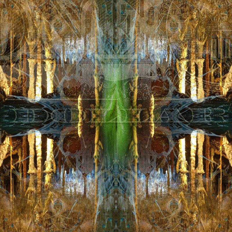 DOLLAR / METAMORPHOSIS / variant /mixed media on canvas / Artist - Andreas Streicher